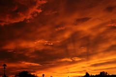 Sunset 7 20 19 134 (Az Skies Photography) Tags: sun set sunset dusk twilight nightfall sky skyline skyscape rio rico arizona az riorico rioricoaz arizonasky arizonaskyscape arizonaskyline arizonasunset cloud clouds red orange yellow gold golden salmon black canon eos 80d canoneos80d eos80d canon80d july 20 2019 july202019 72019 7202019
