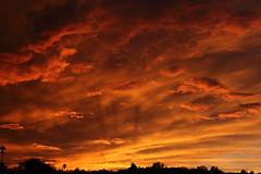 Sunset 7 20 19 124 (Az Skies Photography) Tags: sun set sunset dusk twilight nightfall sky skyline skyscape rio rico arizona az riorico rioricoaz arizonasky arizonaskyscape arizonaskyline arizonasunset cloud clouds red orange yellow gold golden salmon black canon eos 80d canoneos80d eos80d canon80d july 20 2019 july202019 72019 7202019