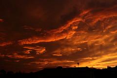Sunset 7 20 19 119 (Az Skies Photography) Tags: sun set sunset dusk twilight nightfall sky skyline skyscape rio rico arizona az riorico rioricoaz arizonasky arizonaskyscape arizonaskyline arizonasunset cloud clouds red orange yellow gold golden salmon black canon eos 80d canoneos80d eos80d canon80d july 20 2019 july202019 72019 7202019