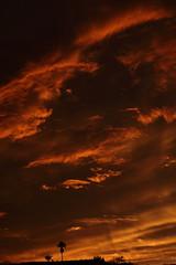 Sunset 7 20 19 107 (Az Skies Photography) Tags: sun set sunset dusk twilight nightfall sky skyline skyscape rio rico arizona az riorico rioricoaz arizonasky arizonaskyscape arizonaskyline arizonasunset cloud clouds red orange yellow gold golden salmon black canon eos 80d canoneos80d eos80d canon80d july 20 2019 july202019 72019 7202019