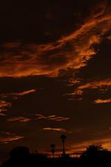 Sunset 7 20 19 092 (Az Skies Photography) Tags: sun set sunset dusk twilight nightfall sky skyline skyscape rio rico arizona az riorico rioricoaz arizonasky arizonaskyscape arizonaskyline arizonasunset cloud clouds red orange yellow gold golden salmon black canon eos 80d canoneos80d eos80d canon80d july 20 2019 july202019 72019 7202019