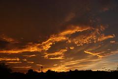 Sunset 7 20 19 088 (Az Skies Photography) Tags: sun set sunset dusk twilight nightfall sky skyline skyscape rio rico arizona az riorico rioricoaz arizonasky arizonaskyscape arizonaskyline arizonasunset cloud clouds red orange yellow gold golden salmon black canon eos 80d canoneos80d eos80d canon80d july 20 2019 july202019 72019 7202019