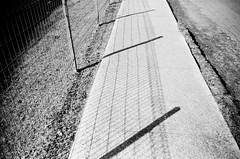 Shadow (Matthew Paul Argall) Tags: zenit35f 35mmfilm ilforddelta100 100isofilm blackandwhitefilm blackandwhite shadow