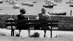 Bench for three (patrick_milan) Tags: banc bench three trois dog chien mer sea portsall finistere bateau ship boat