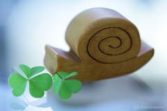made of wood (photos4dreams) Tags: madeofwood hmm macromondays macrolens makro photos4dreams p4d photos4dreamz canoneos5dmarkiii