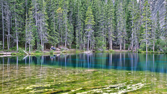 Grassi Lakes (Rob McC) Tags: tranquil peaceful landscape water reflections woodland pine alberta canada canmore le longexposure