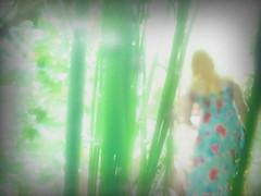 Ilvy running through the garden - Photo by Lotti (9 years old - editing by me) - An Afternoon in the Garden - Lotti photographiert Ilvy im Stile des Piktorialismus, oder David Hamiltons (mehr bekleidet) (hedbavny) Tags: grain pictorialism piktorialismus piktorialistischefotografie grainy korn blurry blur verschwommen verwackelt bewegung motion kid kids girl mädchen kind child collaboration blond green grün blue blau pastell flaxen flachsfarben gelb yellow garden garten kleingarten schrebergarten allotment horsetail schachtelhalm equiseta farn katzenschwanz zinnkraut flower blume blumenmuster sommerkleid tree baum sommer summer sun sonne nachmittag afternoon memory erinnerung impressionism impressionismus painterly kitsch photography fotobearbeitung editing vignette artphotography farbfotografie dream traum wien vienna hedbavny candid