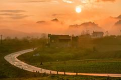 _J5K8636.0110.Mộc Châu.Sơn La (hoanglongphoto) Tags: asia asian vietnam northvietnam northwestvietnam northernvietnam mocchaulandscape mocchauscenery vietnamlandscape vietnamscenery sunrise sky redsky sun hillside hill village homes road canon tâybắc sơnla mộcchâu ql6 conđường bìnhminh bầutrời bầutrờimàuđỏ ngọnđồi dãyđồi bảnlàng nhữngngôinhà phongcảnh phongcảnhmộcchâu bìnhminhmộcchâu nature thiênnhiên dawn mocchauplateau caonguyênmộcchâu canoneos1dsmarkiii canonef70200mmf28lisusm mặttrời happyplanet asiafavorites