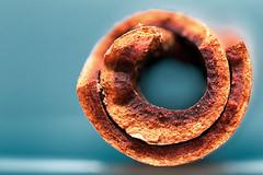 """Twist of Cinnamon """"Wood"""" (Geolilli) Tags: twist cinnamon macro macromondays wood seasoning bark"""