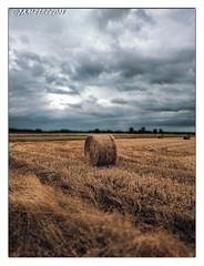 Après la chaleur...Les nuages (jamesreed68) Tags: meule foin alsace wattwiller grandest hautrhin 68 france nature nuages groupenuagesetciel