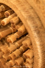 tandenstokers (Hetwie) Tags: jar macro hmm madeofwood macromondays tandenstoker potje toothpickinajar wood macromaandag gemaaktvanhout hout toothpick