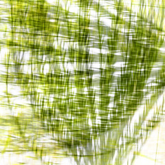 Pond weeds. (jeanne.marie.) Tags: multipleexposure weeds squareformat pond summer blur abstract 100xthe2019edition 100x2019 image80100