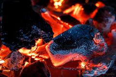 Macro Mondays - Made of wood (benno.dierauer) Tags: charcoal holzkohle madeofwood schweiz switzerland macrounlimited macro macromondays makro tamronsp90mmf28dimacro11vcusd glut fire feuer glow