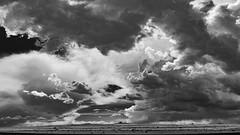 (el zopilote) Tags: losvolcanes albuquerque newmexico westmesa petroglyphnationalmonument landscape powerlines clouds canon eos 5dmarkii canonef24105mmf4lisusm fullframe bw bn nb blancoynegro blackwhite noiretblanc digitalbw bndigital schwarzweiss monochrome