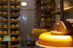 Sous presse (Atreides59) Tags: fromage cheese jaune yellow volendam holland hollande paysbas netherlands pentax k30 k 30 pentaxart atreides atreides59 cedriclafrance