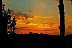 Lever (JDAMI) Tags: lever soleil sunrise sunset rouge rayons horizon silhouettes ciel sky arbres lahonce 64 pyrennéesatlantiques gascogne aquitaine nouvelleaquitaine paysbasque france lumière nuages cloud nikon d600