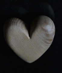 My heart is made of wood (glyn_nelson) Tags: heart madeofwood macromondays wood oak macro