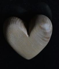 My heart is made of wood (glyn_nelson) Tags: heart madeofwood macromondays wood oak macro