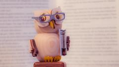 Once upon a time... (Max_G6) Tags: macromondays madeofwood wood owl macro dof souvenir book