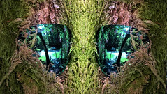 2 (Tobymeg) Tags: altered images 2 mirrored microsoft lumia 640 lte phome pics