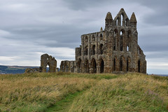 Whitby Abbey (iwys) Tags: whitby abbey ruins church yorkshire monastery architecture english heritage