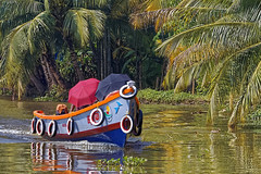 _MG_7239_DxO (carrolldeweese) Tags: houseboat kerala india