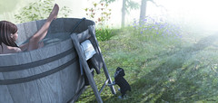 morning bath (Mara Telling:) Tags: sl secondlife bath outdoor pets dog nature tub cooper
