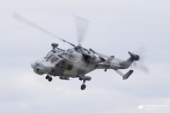 Westland Lynx Wildcat HMA2 (Matt Sudol) Tags: royal navy fleet air arm rnas naval station yeovilton hms heron day show festival thresholdaero aha events vlad vl agusta westland lynx wildcat hma2 815 825 squadron nas