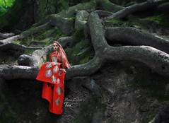 Fox (pure_embers) Tags: pure embers doll dolls uk pureembers photography laura england poppy parker embersfox rimdoll ooak repaint portrait integrity toys red dress tree roots dark