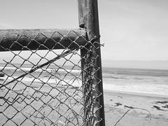 00135 (alankaplan2) Tags: fench chainlink beach ocean blackwhite composition
