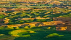 Steptoe Butte 5579 B (jim.choate59) Tags: jchoate on1pics field rural palouse steptoebutte magichour goldenhour hills rolling agriculture whitmancounty landscape washingtonstate d610