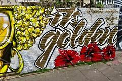 Golden, London, UK (Robby Virus) Tags: london england uk unitedkingdom britain greatbritain gb candie bandita carleen desozer artist mural street art live life like golden glasses woman flowers