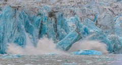 Dawes Glacier (jeff's pixels) Tags: red glacier alaska landscape iceberg nature amazing blue ice ocean endicott arm fjord dawes dawesglacier nikon d850 bird bus train plane outside nikkor water snow winter summer sea