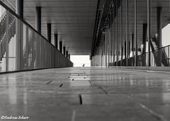 The Photographer (andreasscharr) Tags: canon5dmarkiv blackwhite schwarzweiss monochrom einfarbig black dresden sachsen saxony germany deutschland architecture architektur glas beton steine stadt city europa