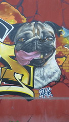 graffiti, Bordeaux (duncan) Tags: graffiti bordeaux pugs pug puglife