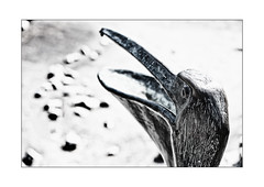 Pelikan (Armin Fuchs) Tags: arminfuchs lavillelaplusdangereuse würzburg landesgartenschau park diagonal bird iron niftyfifty lowsaturation pelikan pelican