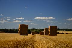 Bottes de paille et nuages (Corinne Lejeune Girot) Tags: meadow campagne champ field sky ciel cloud nuage bleu blue plaine paille rural juillet july normandie france