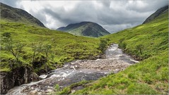 Oly_6180059 (calpha19) Tags: imagesvoyagesphotography adobephotoshoplightroom olympusomdem1mkii em1mkll zuiko ed1260swd voyage escapade roadtripinscotland scotland ecosse juin 2019 landscapes paysages glencoe glenetive river etive eaux vives torrent montagne ngc flickrsexplore nationalgéographic explorez explore nature sauvage