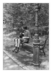 suspended (Armin Fuchs) Tags: arminfuchs thomaslistl niftyfifty lavillelaplusdangereuse diagonal lamp bench ringpark trees levitation