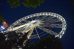 Budapest Eye, Hungary. (Manoo Mistry) Tags: budapest hungary europe budapesteye ferriswheel nightscene night perspective nikond5500 tamron18270mmzoomlens