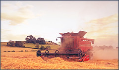 Evening Harvest (Jason 87030) Tags: 7088 case dust straw wheat crops farm field flecknoe warks warwickshire combineharvester land countryside evening light slow weather shot staverton wayhome agriculture farmland uk english england red machine machinery