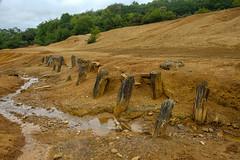 Exposed adit, West Chiverton Mine, Marazanvose (Rogpow) Tags: cornwall abandoned mine timber sandy derelict tailings adit marazanvose westchivertonmine fuji decay fujifilm disused industrialarchaeology leadmine industrialhistory fujixpro2