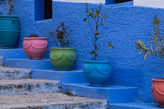 Colorful steps (Irina1010) Tags: steps pots colorful blue pink green urban city chefchaouen morocco 2019 canon
