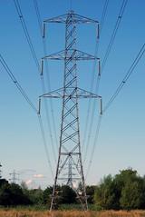 (karl from perivale) Tags: pylon telegraphtuesday powerline denham summer sky trees outdoor buckinghamshire denhamcountrypark
