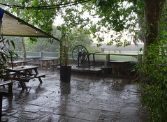 Wet waterside (Phil Gayton) Tags: tree canopy table mechanism wheel bench grass rain waterside bistro mill tail vire island river dart totnes devon uk