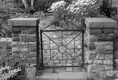 Old Gate (Bill Smith1) Tags: beaches believeinfilm billsmithsphotography classiccamerarevival hc110b heyfsc nikkorais50f18lens nikonfe2 rolleirpx100 toronto2019