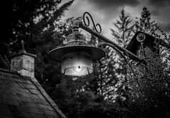 You can leave the light on... (Gullivers adventures) Tags: airbnb lamplight lamp light old ireland countryhouse beautiful cottage rural dark bnw blackandwhite trees nature travel adventure love sexy trekking countryside