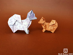 Origami Spitz Nains - Barth Dunkan. (Magic Fingaz) Tags: anjing barthdunkan chien chó dog hond hund köpek origami paperfolding perro pies пас пес собака หมา 개 犬 狗 mfpp ecorigami origamidog
