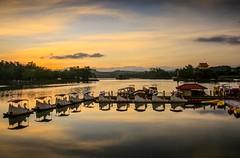"""天鵝""湖晨光(""Swan""lake)。 (Charlie 李) Tags: lake swan clouds hutoupi sunrise 倒影 雲彩 天鵝船 新化區 虎頭埤 晨光 日出"