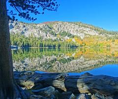Autumn Sunrise, Lake George, Sierra Nevada, CA 2016 (inkknife_2000 (10.5 million + views)) Tags: mammothlakes lakegeorge fallfoliage waterreflections dgrahamphoto usa landscapes bluesky stillwater california sierranevada mountains alpinelakes fallentree